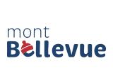 Mont Bellevue